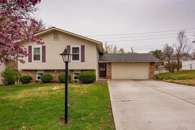 24 Meandering Lane, Saint Peters, MO 63376 (#20021694) :: Kelly Hager Group | TdD Premier Real Estate