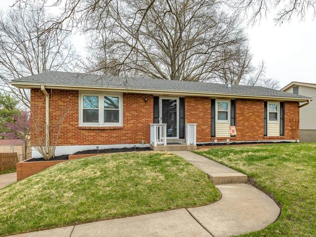4521 Niagara, St Louis, MO 63129 (#20021717) :: Matt Smith Real Estate Group