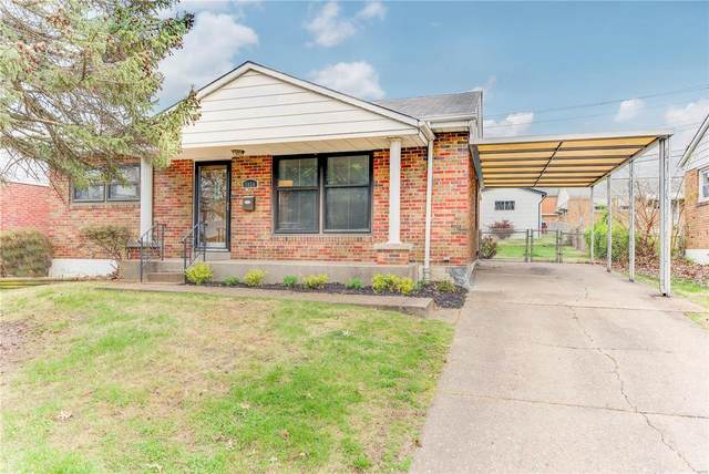 7024 Radom Street, St Louis, MO 63116 (#20021853) :: Kelly Hager Group   TdD Premier Real Estate