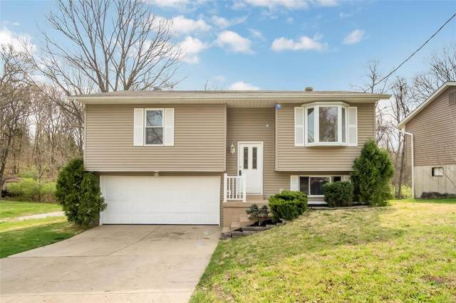 5320 Chippendale Lane, Imperial, MO 63052 (#20022033) :: Peter Lu Team