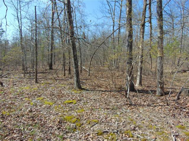 0 Tbd Co Rd 431, Poplar Bluff, MO 63901 (#20022120) :: St. Louis Finest Homes Realty Group