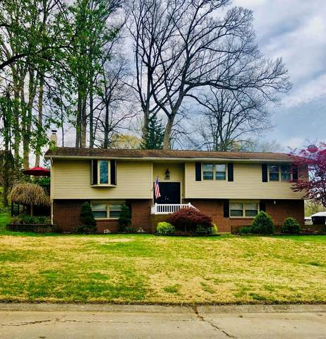 2037 Kenneth, Cape Girardeau, MO 63701 (#20022222) :: St. Louis Finest Homes Realty Group