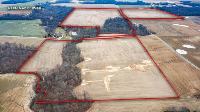 0 Tbd Bushy Prairie Road, Fults, IL 62244 (#20023700) :: Tarrant & Harman Real Estate and Auction Co.