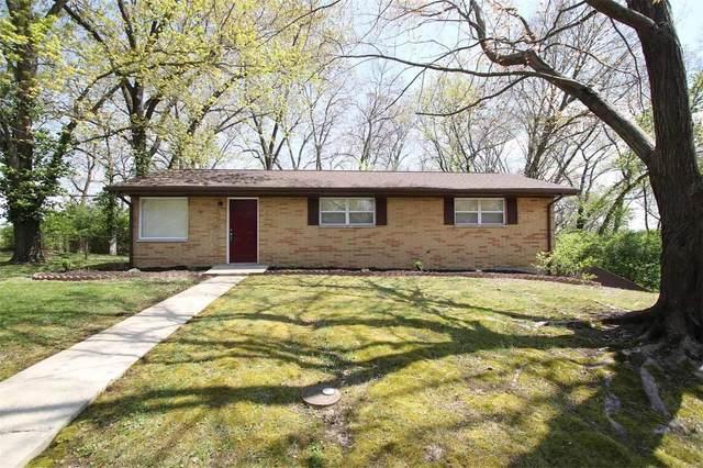 46 Highwood Drive, Belleville, IL 62223 (#20025055) :: Peter Lu Team