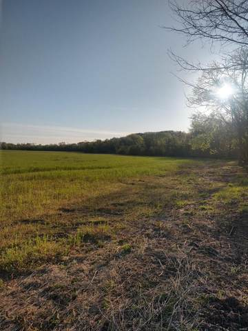 0 Youngs Lane, Louisiana, MO 63353 (#20025087) :: The Becky O'Neill Power Home Selling Team