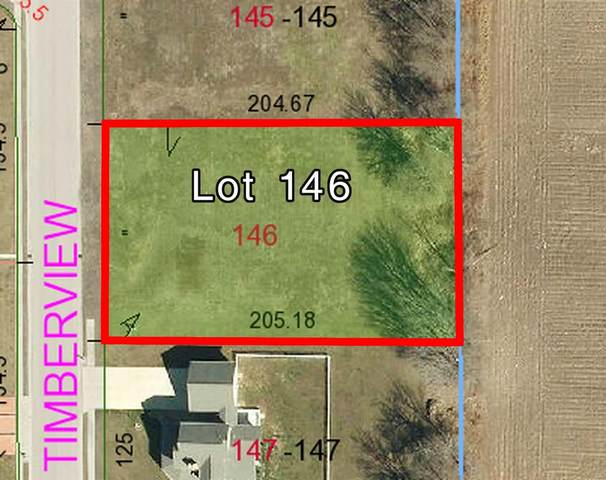 140 S Timberview Drive, STAUNTON, IL 62088 (#20025289) :: Matt Smith Real Estate Group