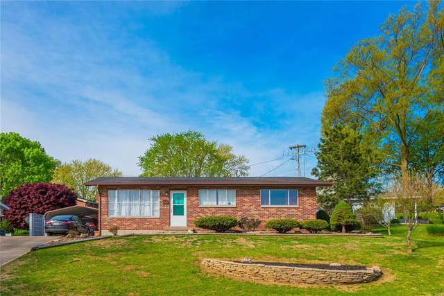 227 Saint Jude Dr, Ste Genevieve, MO 63670 (#20025541) :: St. Louis Finest Homes Realty Group