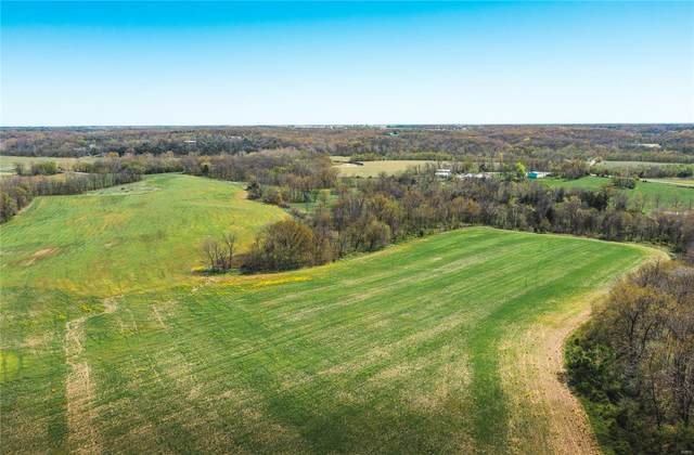 1351 Highway A, Hawk Point, MO 63349 (#20026008) :: The Becky O'Neill Power Home Selling Team