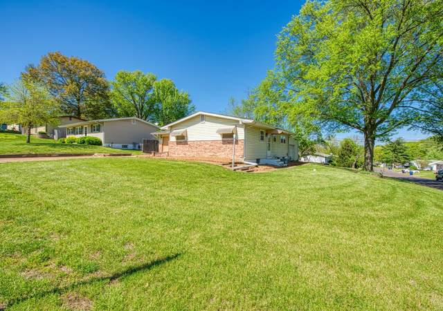 251 Freeman Drive, St Louis, MO 63129 (#20026476) :: Kelly Hager Group   TdD Premier Real Estate
