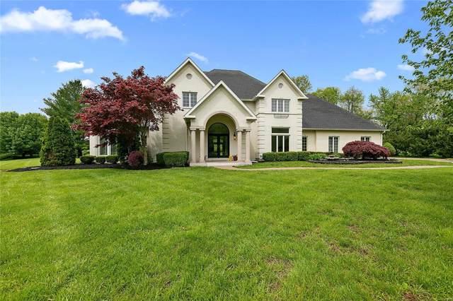 517 Lake Christine Drive, Belleville, IL 62221 (#20028449) :: Kelly Hager Group   TdD Premier Real Estate