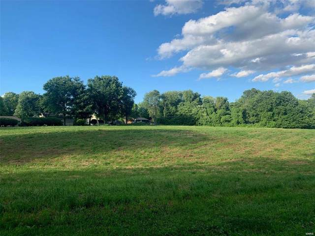 0 North Shore Lot 1 Drive, Collinsville, IL 62234 (#20029013) :: The Becky O'Neill Power Home Selling Team