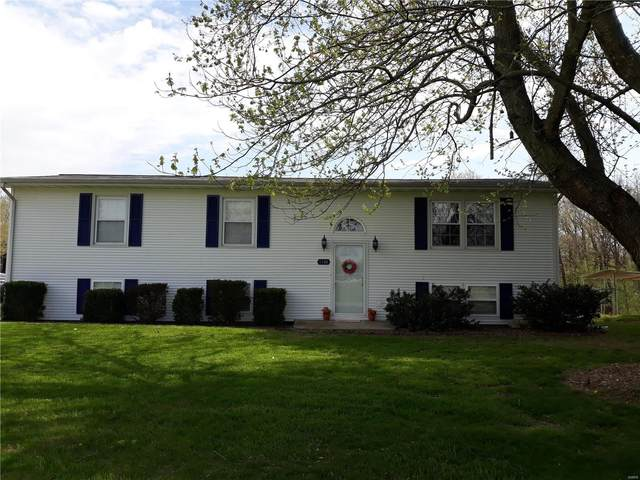 1144 Mulberry Grove, MULBERRY GROVE, IL 62262 (#20029963) :: The Becky O'Neill Power Home Selling Team