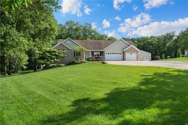309 Meadow Brook Estates Lane, Wentzville, MO 63385 (#20030112) :: RE/MAX Vision
