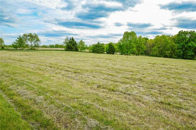 240 Rocking Horse Lane, Elsberry, MO 63343 (#20031286) :: RE/MAX Professional Realty