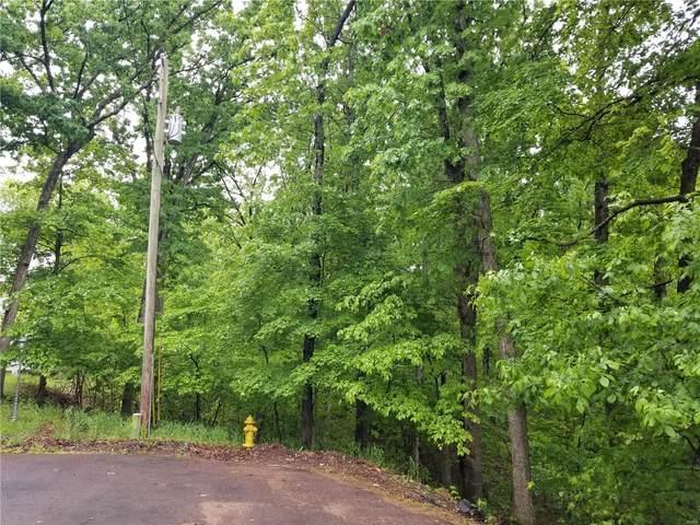 1256 Robin Hood Court, Marthasville, MO 63357 (#20032289) :: Century 21 Advantage