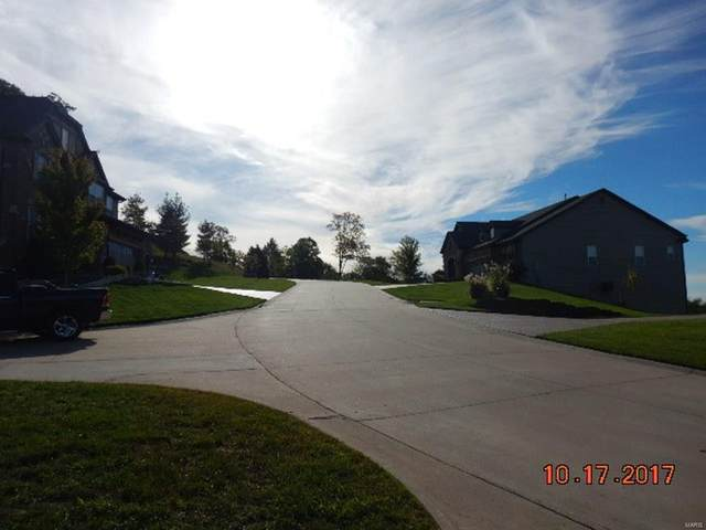 4225 Napa View Lane, Unincorporated, MO 63304 (#20032470) :: RE/MAX Vision