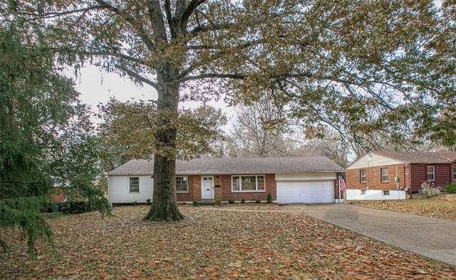 101 S Elizabeth, Ferguson, MO 63135 (#20032726) :: Kelly Hager Group | TdD Premier Real Estate
