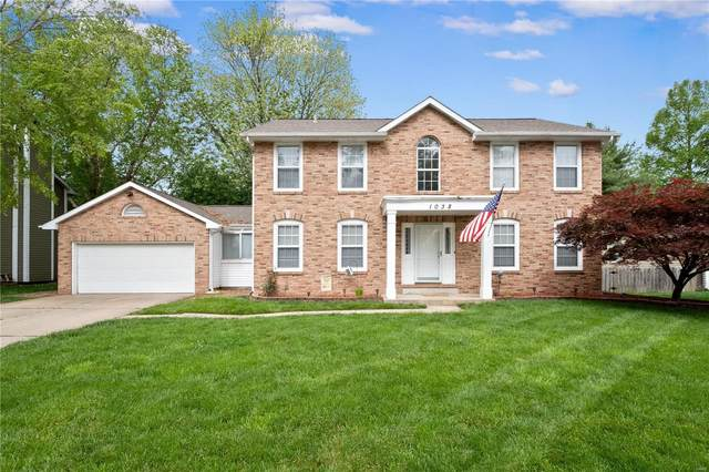 1038 Timber Creek Drive, O'Fallon, IL 62269 (#20032881) :: St. Louis Finest Homes Realty Group