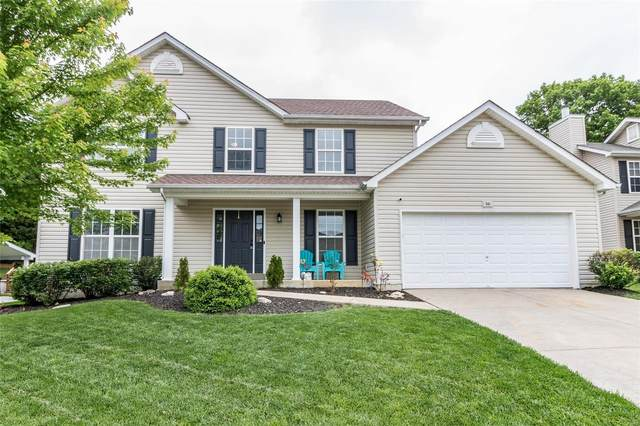 541 Great Oaks Meadow Drive, Wentzville, MO 63385 (#20033187) :: The Becky O'Neill Power Home Selling Team