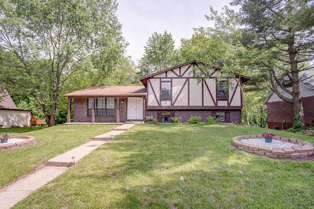 216 Bobbie Drive, Swansea, IL 62226 (#20033352) :: The Becky O'Neill Power Home Selling Team