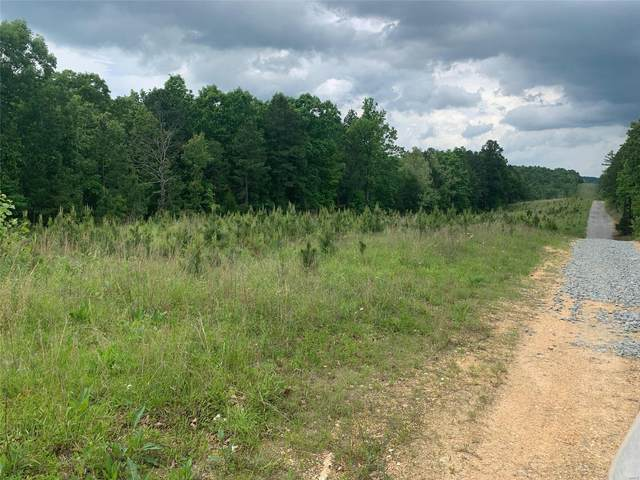 10107 S Highway 67, Fredericktown, MO 63645 (#20033420) :: Clarity Street Realty