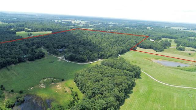 9897 County Road 2680, Mountain View, MO 65548 (#20034006) :: Realty Executives, Fort Leonard Wood LLC