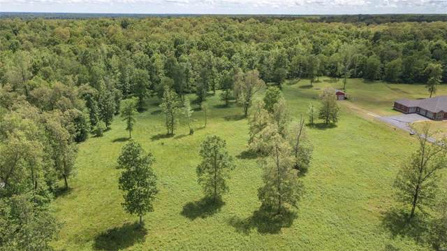 0 S Of Hwy 160, Naylor, MO 63953 (#20034664) :: The Becky O'Neill Power Home Selling Team