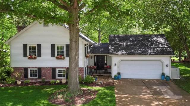 14978 Country Ridge, Chesterfield, MO 63017 (#20034703) :: RE/MAX Vision