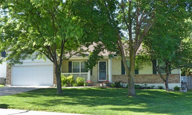 194 Cherrywood Parc Drive, O'Fallon, MO 63368 (#20035271) :: The Becky O'Neill Power Home Selling Team