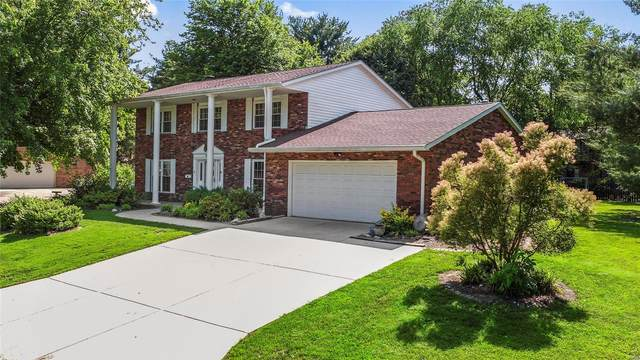 807 Lakeshore, O'Fallon, IL 62269 (#20035796) :: The Becky O'Neill Power Home Selling Team