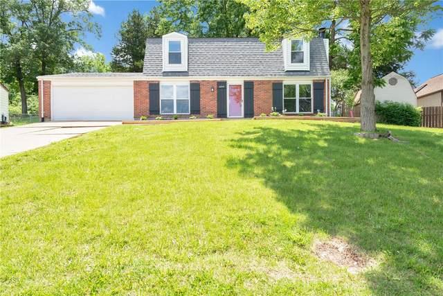 2048 Catlin Drive, Barnhart, MO 63012 (#20036245) :: Clarity Street Realty