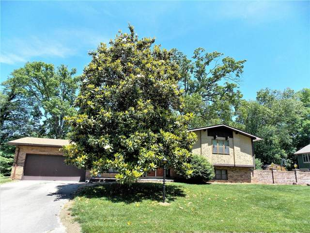 229 Jubaka Drive, Fairview Heights, IL 62208 (#20036697) :: RE/MAX Vision