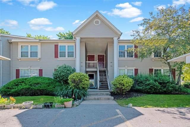 1056 Sugar Creek Court, Saint Peters, MO 63376 (#20036835) :: Kelly Hager Group | TdD Premier Real Estate