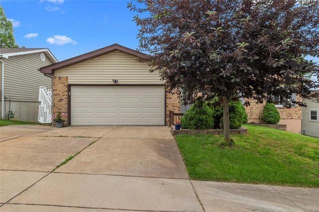12126 Beckford Estates, Maryland Heights, MO 63043 (#20036969) :: St. Louis Finest Homes Realty Group