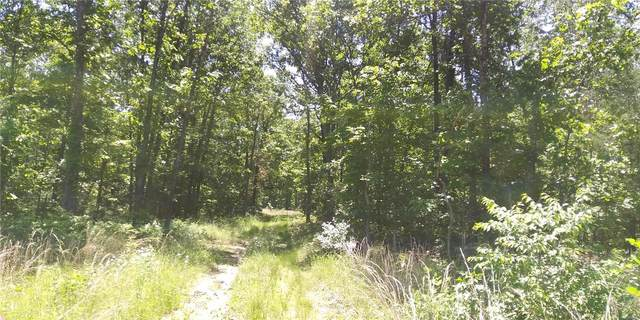 0 County Road 7080, West Plains, MO 65775 (#20038023) :: Parson Realty Group