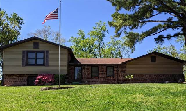 420 Kinswood Lane, St Louis, MO 63129 (#20038131) :: Kelly Hager Group   TdD Premier Real Estate