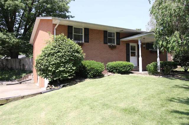 49 Eastmoor, Wood River, IL 62095 (#20038208) :: Parson Realty Group