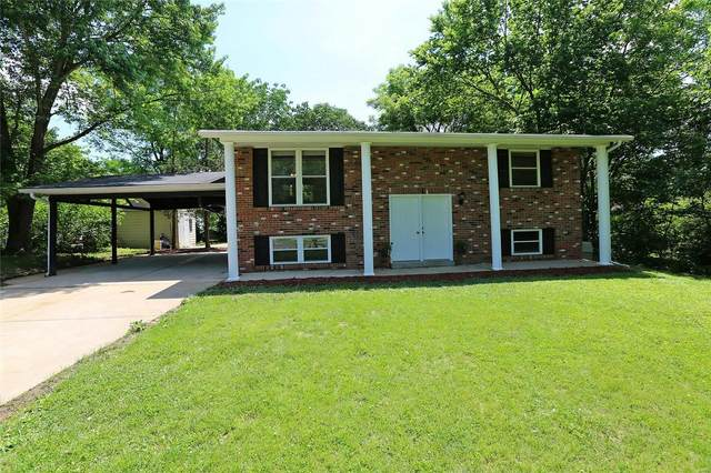31 White Birch Court, Fenton, MO 63026 (#20038483) :: Sue Martin Team