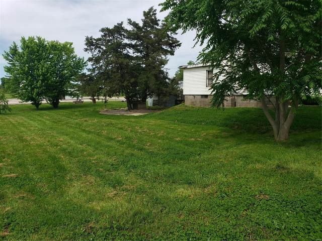 201 N 2nd Street, Canton, MO 63435 (#20038709) :: Parson Realty Group