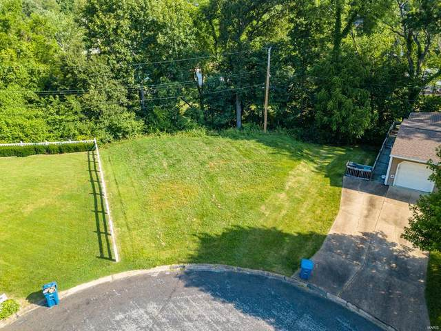 10125 Florinda Drive, St Louis, MO 63123 (#20039783) :: The Becky O'Neill Power Home Selling Team