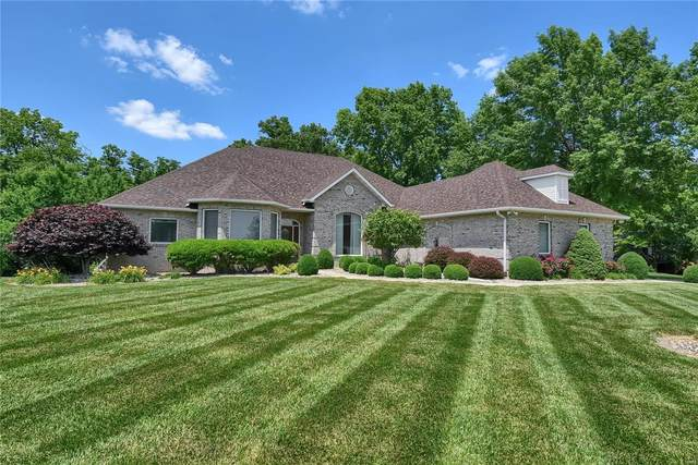 6605 Fox View Drive, Edwardsville, IL 62025 (#20039979) :: The Becky O'Neill Power Home Selling Team
