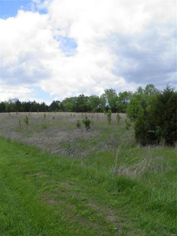 0 Lot 8 Of Dry Fork Meadows, Imperial, MO 63052 (#20040077) :: Walker Real Estate Team