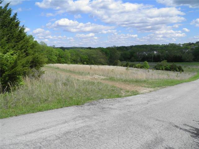 0 Lot 12 Of Dry Fork Meadows, Imperial, MO 63052 (#20040562) :: Barrett Realty Group