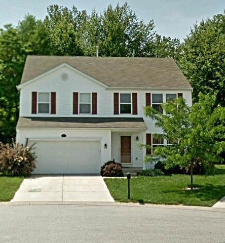 1724 Shade Tree, Swansea, IL 62226 (#20040711) :: Parson Realty Group