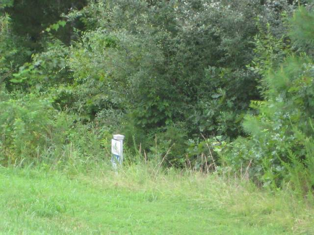 0 Parrish Ridge Lane Lot 244, GOREVILLE, IL 62939 (#20041806) :: The Becky O'Neill Power Home Selling Team