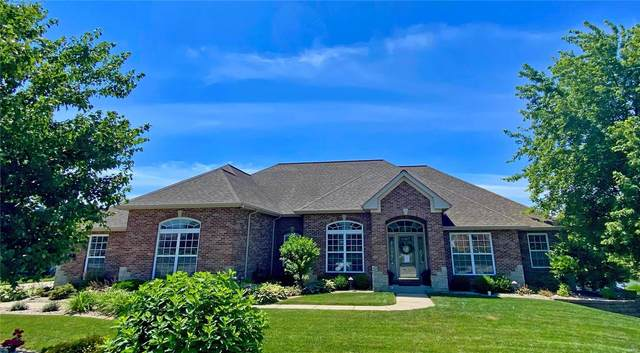 1404 Harlequin Point, Swansea, IL 62226 (#20042625) :: Clarity Street Realty