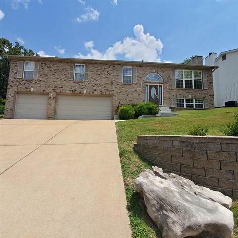 13258 Shady Green, St Louis, MO 63128 (#20042749) :: Matt Smith Real Estate Group