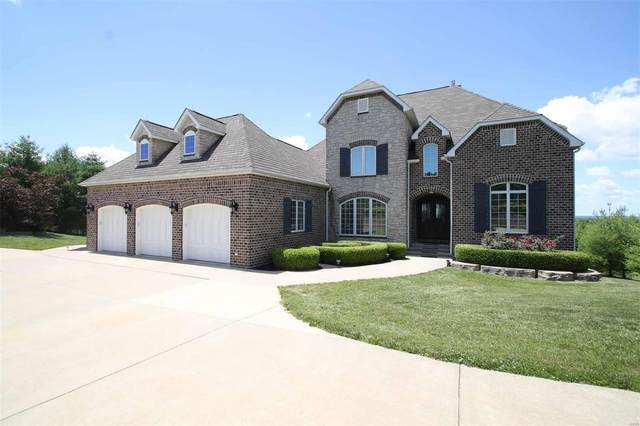 398 Quarry Road, GOLDEN EAGLE, IL 62036 (#20043291) :: Clarity Street Realty