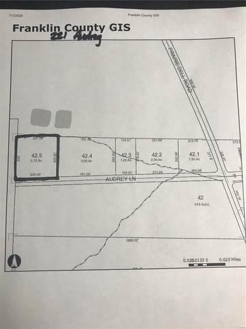 221 Audrey Lane, Union, MO 63084 (#20043323) :: PalmerHouse Properties LLC