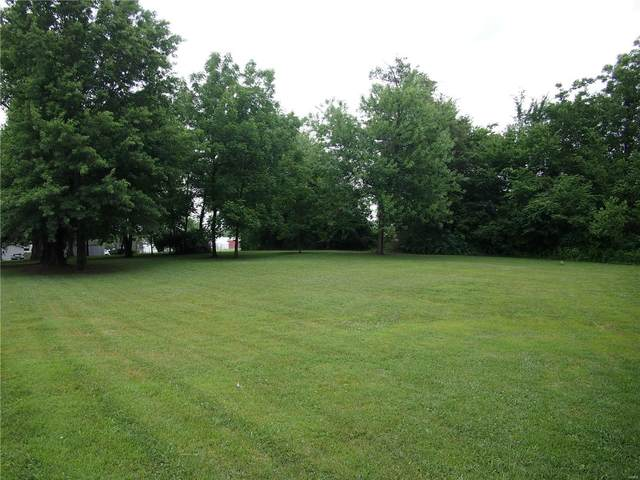 1148 S Minnie, TILDEN, IL 62292 (#20044500) :: Parson Realty Group